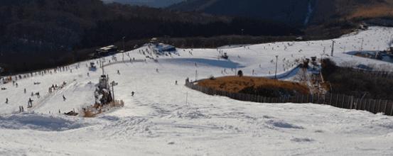 福岡ゲレンデ九重森林スキー場