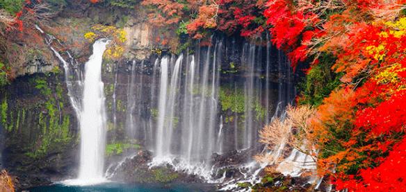 秋の白糸の滝in糸島
