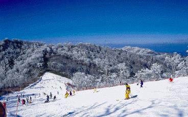 福岡スキー場宮崎